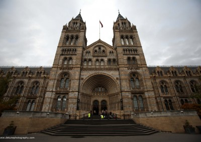 NHM - London, UK
