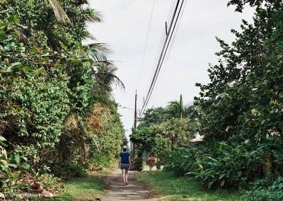 Tortuguerro, Costa Rica